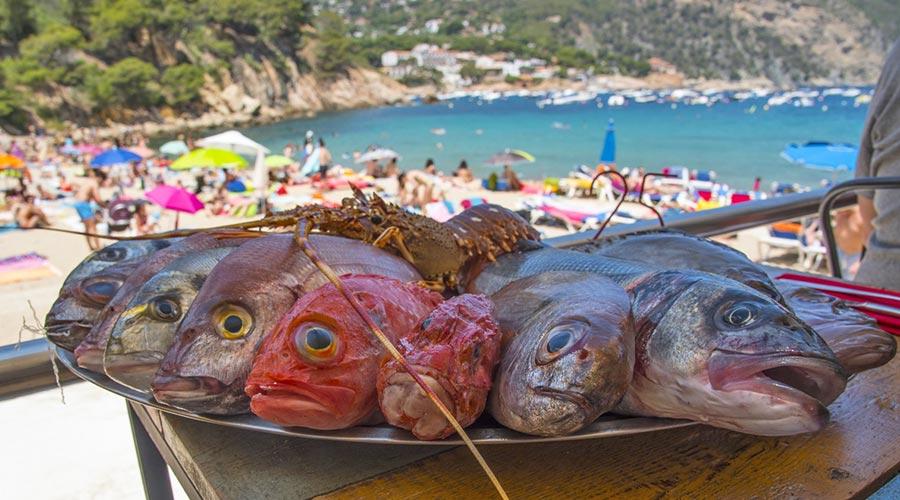 Pescado de roca en Begur